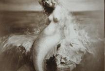 Mermaids / by Little Blue
