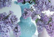 Milk glass <3 / by Melissa Whittamore