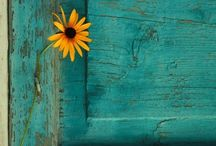 Turquoise / Turquoise, Aqua, teal....soothing colours / by Kay D'Angelo