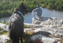 Hiking at Cabot Shores, NS / We're all about adventure, and we have some amazing hikes all around us.  / by Cabot Shores Wilderness Retreat