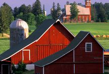 Barns / by Vickie Westmoreland