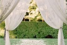 Wedding / by Maria Lina
