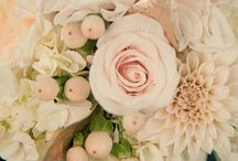 Sherin Koshy Bridal Board / by Tammy of Sincerely Yours Events, Inc.