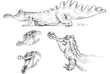 Animation Art & Model Sheets / by J. Schuh