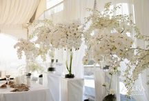 Wedding Venue Decorations / by Tanya Whiteley