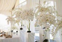Wedding / by Anna Leah