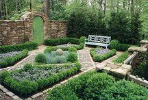 Gardens/Yard / by Katharine Turner