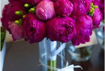 flowers / by Erin Radocchia
