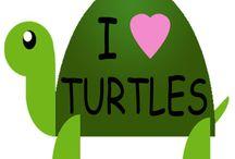 Turtles / by Katy Greene