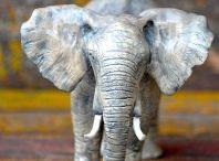 Elephant love / by Anna BLUECHURCH