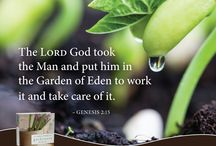 God's Word for Gardeners / A Bible designed to highlight the many ways God speaks to his people using the language of seeds, cultivation, growth and gardens. Put down your roots and let the Ultimate Gardener tend to your soul. / by NIV Bible by Zondervan