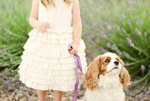 Miss Riley Jane: flower girl dresses / by Erica Priestley