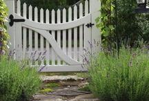 Outdoor spaces / Garden ideas / by Emma Billsborough