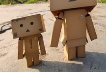 danbo / by Akame