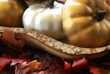 Thanksgiving Ideas / by Brenda Munn