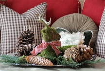 My Christmas Decor / by Savvy Southern Style