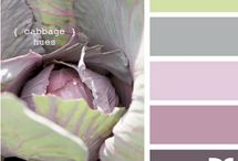 Color Schemes / by Janeen Home Decor