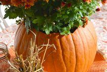 Fall Is My Fav / by Crystal Killinger