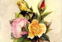 Watercolor pencil / by Ula Lala