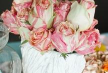 Wedding / by Tori Schultz