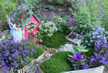 Magical Fairy Garden Ideas / by Tegan Neville