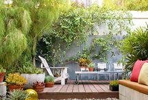 Green space / by Sandra Villeneuve
