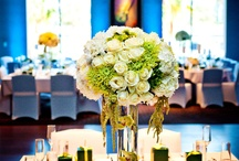 Wedding Inspirations / Some inspiring ideas for brides to be from past weddings hosted at the hotel.  / by Hard Rock Hotel San Diego