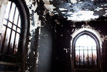 Abandoned / by Ann Lowenthal