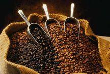 Cafe Ole! / by Linda Chumbley