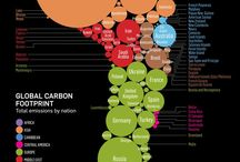 Infographic / by Martin Augsburger