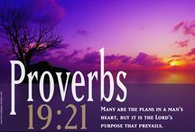 The book of Proverbs / by Katie M