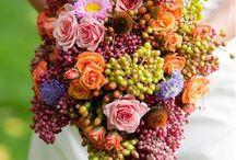 Flowers / by Cheryl Wilhelmi