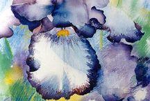 Watercolor Art / by jill hennessey