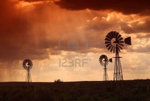 SOUTH AFRICA / by Nietie Lotter