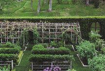 Kitchen gardens / by Kathryn M Ireland