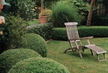 Gardening / by CrescentCityCouponer
