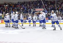 Toronto Marlies / by Maple Leafs Hotstove