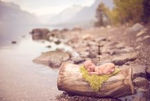 Newborns / by Woodsy Wonders Photography