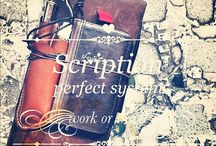 Journal / by Sarah Knight