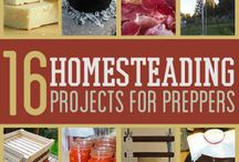 Homesteading Basics / Helpful information for people living off the land or those looking to get started / by Chelsea Green Publishing