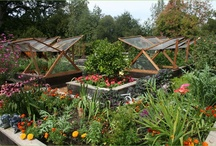 garden and nature / by CHARLENE PARK