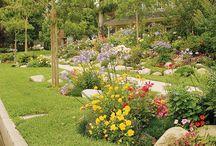 Gardening / by Kelli Lawshee