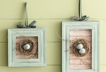 bird nest decor / by Peas Parsnips
