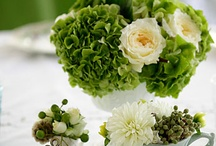 Centerpieces and Tablescapes / by Beverly Kennedy