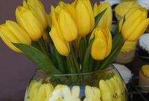 Spring ideas / by Shannon Hruzek