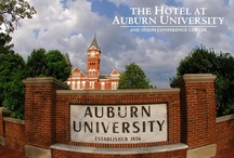 EXPLORE | Auburn University / The Hotel at Auburn University is proudly owned by Auburn University  The hotel is also In partnership with the College of Human Sciences Hospitality Management Program / by The Hotel at Auburn University