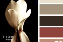 color palette / by Adrienne White