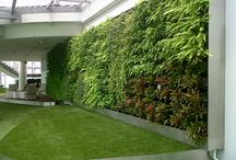 Eco Outdoor - Green Walls / Creating lush, beautiful and easy to maintain vertical gardens for indoor or outdoor has become much easier with our Green wall and facade solutions powered by Atlantis Gro-Wall® technology. The simple and strong design of our solutions makes it the perfect choice for landscapers, architect and green enthusiasts.  / by Eco Outdoor Asia