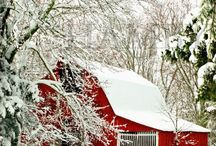 Barns / by Deb J