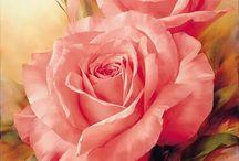 Roses / by Lillian Metzler